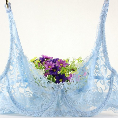 Embroided Lace Push Up Bra