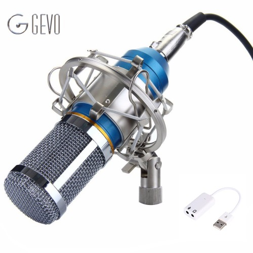 Condenser Microphone Professional Metal Shock Mount Microphone For Video Recording Studio