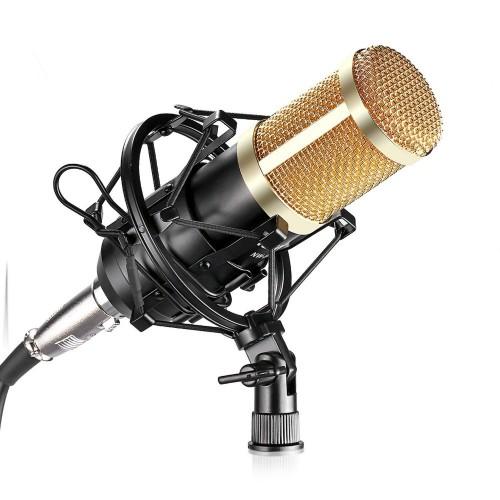 Professional Studio Microphone Set Mic Mic Shock Mount Anti wind Cap Mic Power