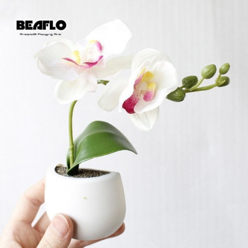 5 Style Artificial Silicone Succulent Flowers Bonsai Orchid Plant Fridge Magnet For Home Wedding Hotel Party