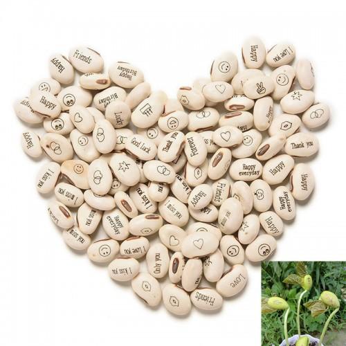 100PCS Magic Growing Message Beans Seeds Magic Bean English Magic Bean Bonsai Green Office Home Decoration
