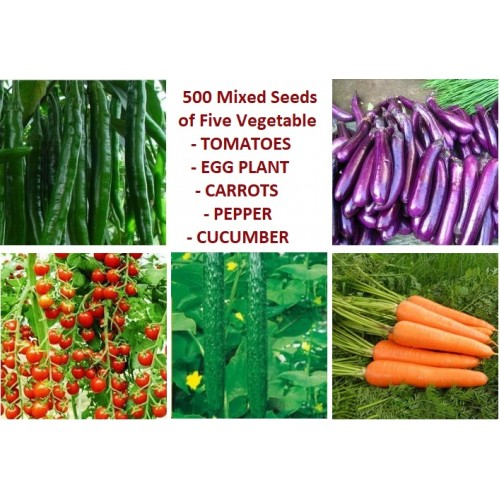 500 seeds of 5 different vegetables Eggplant Carrot Cucumber Pepper Tomato