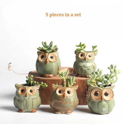 Cartoon Owl shaped Flower Pot for Succulents Fleshy Plants Flowerpot Ceramic