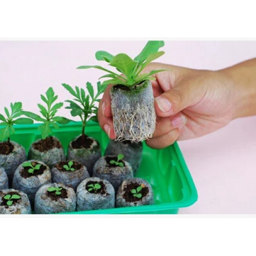 Free shipping jify peat Planting cutting garden supplies seed starter vegetable seeds pellete new