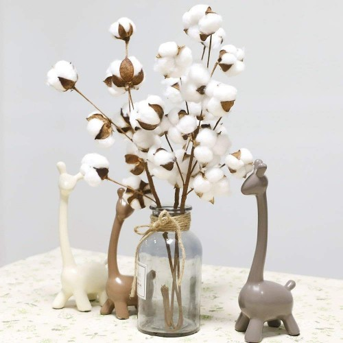 21 Inch Naturally Dried Cotton Stems Farmhouse Style Artificial Flower Filler Floral Decor White Cotton Stems