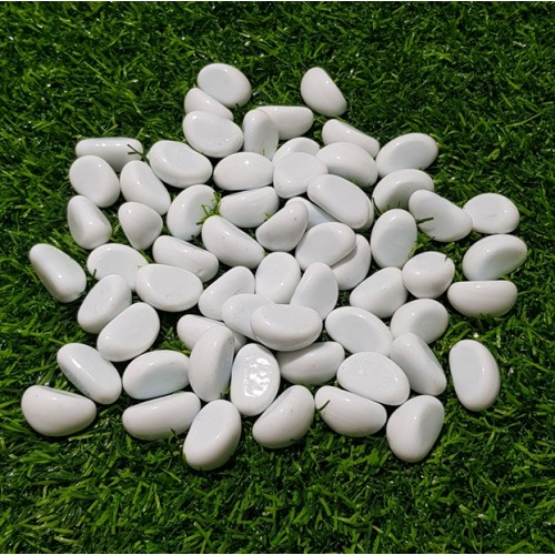 30 Pieces Gravel Pebbles For Aquarium Ornaments Fish Tank & Pots Decore (11)