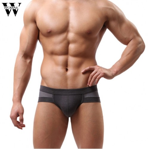 Summer Mens Underwear Low Waist Cotton Briefs Underpants for Men