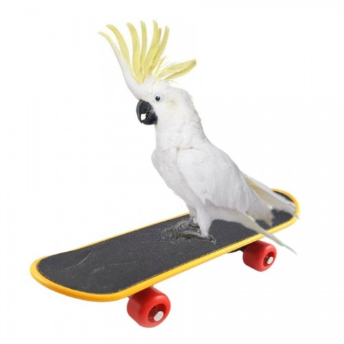 Pet Bird Toys Parrot Toys Funny Intelligence Skateboard Toy Stand Perch Toy For Parakeet Cockatiels Bird