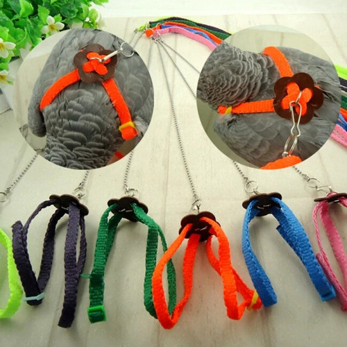 High quality Random Color Great Parrot Bird Harness Leash Adjustable Light Soft