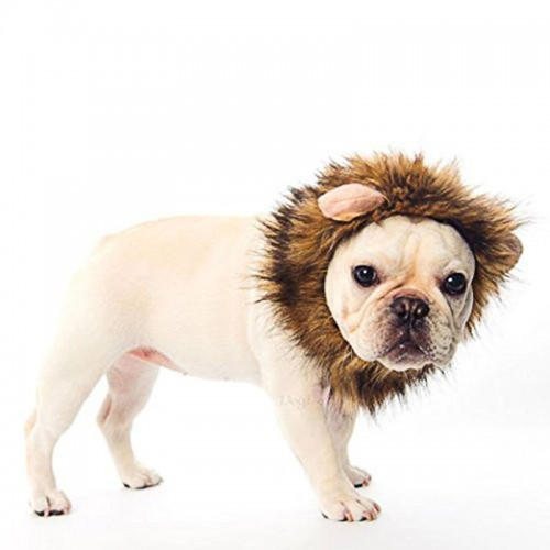 Cute Pet Hat Costume Lion Mane Wig For Cat Halloween Dress Up With Ears Party