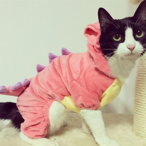 Pet Plush Outfit Dinosaur Costume with Hood for Small Cats Jumpsuit Winter Coat Warm Clothes