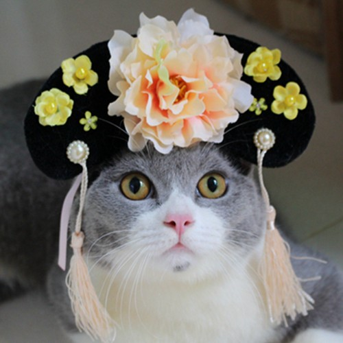 Qing Dynasty Chinese Princess Headdress Princess Pet Cat Hair Accessories