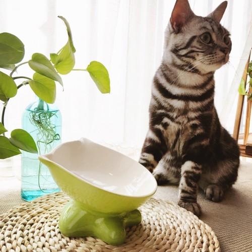 Pet Slant Ceramic Cat Bowl Garfield s Bowl
