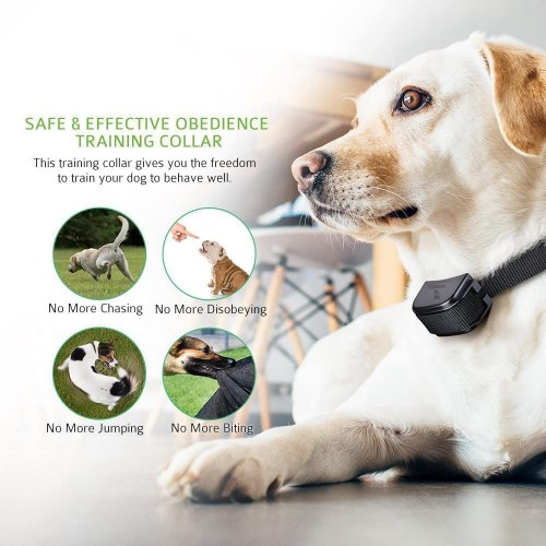 GLEADING 300 Meters Remote Dog Training Collar Waterproof Rechargeable With Warning Tones