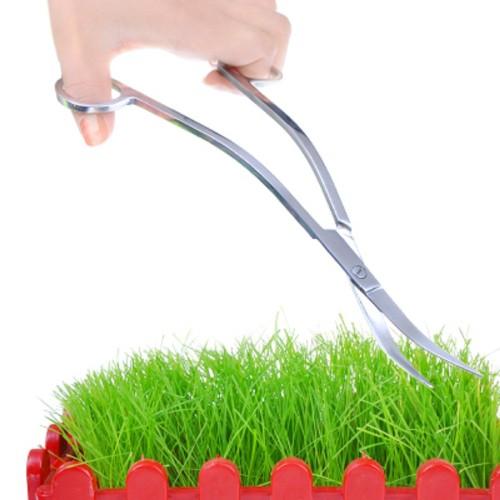 Aquarium Plant Tank Wave scissor curved Stainless Steel tijera tesoura clean tool water grass