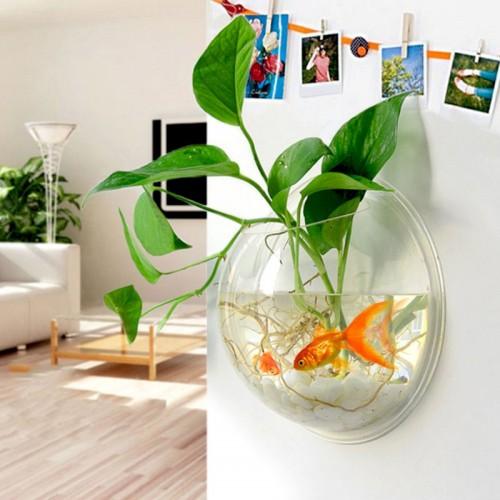 Home Decoration Pot Plant Wall Mounted Hanging Bubble Fish Bowl Acrylic Bowl Fish Tank