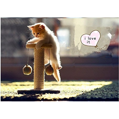 Climbing Tree for Cat Jumping Toy Climbing Frame Cat