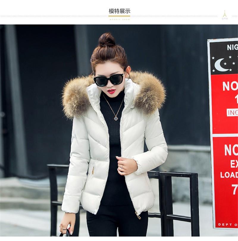 1746240949 ... Fake-fur-collar-Parka-down-cotton-jacket-2016- ...
