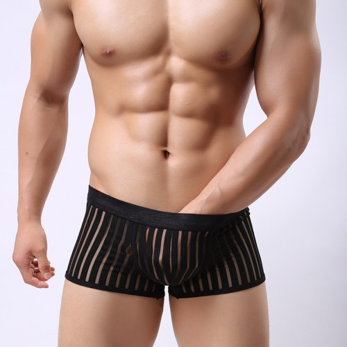 Breathable Low Rise Transparent  Striped Boxer
