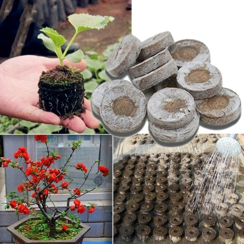 10pcs 30mm Peat Pellets Seed Starting Plugs Pallet Seedling Soil Block Efficiency Rapid Expansion For Transplanting Planting
