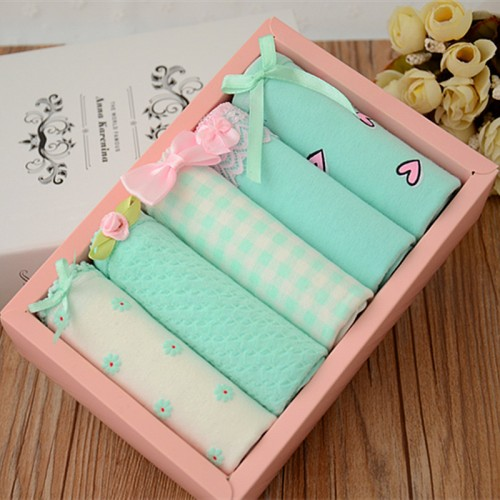 5pcs/lot High Quality New Grid Underwear Lace Floral Low Waist Briefs