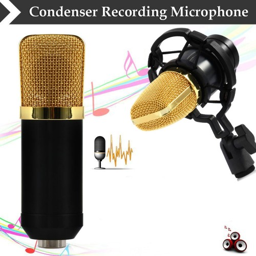 Dynamic Condenser Sound Recording Microphone with Shock Mount for Radio Braodcasting