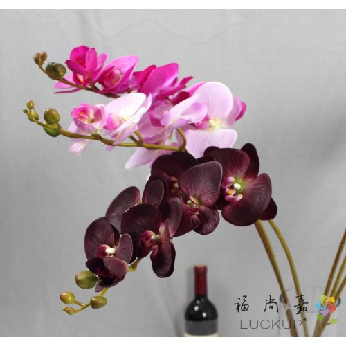 1 Stem Real Touch Latex Artificial Moth Orchid Butterfly Orchid Flower for new House Home Wedding