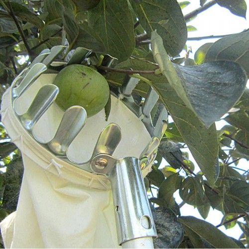 Metal Fruit Picker Convenient Fabric Orchard Apple Peach High Tree Picking Tools