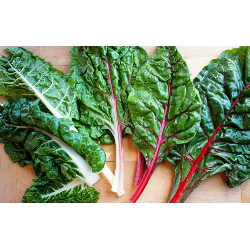 Swiss Chard Red Stem Spinach Heirloom 100 Seeds