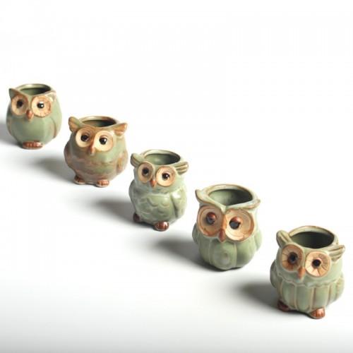 Creative Ceramic Owl Shape Flower Pots for Fleshy Succulent Plant Animal