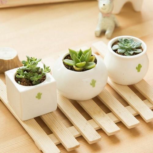 Gardening Mini ceramic Flower Pot Vase circular Bonsai Planter Nursery Seedling pot