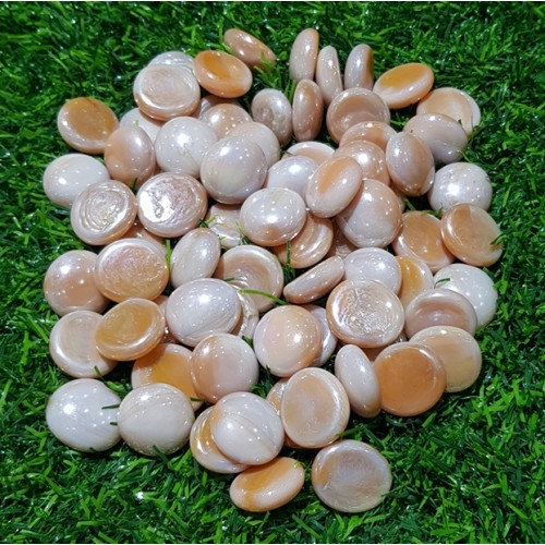 50 Pieces Gravel Pebbles For Aquarium Ornaments Fish Tank & Pots Decore (9)