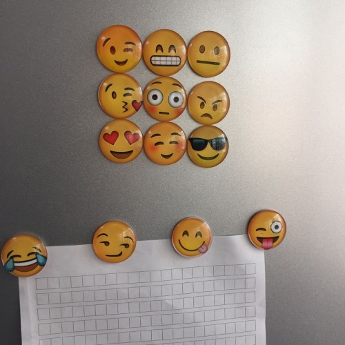 13 pcs Fridge Magnets