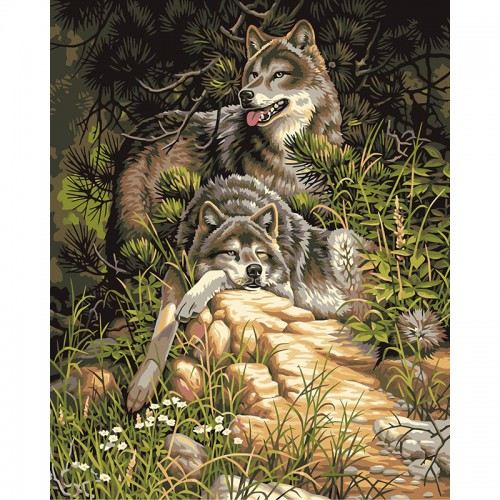 Frameless Wolf Animals DIY Painting By Numbers Acrylic Picture40x50cm