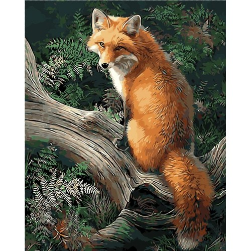 No Frame Fox Animals DIY Painting By Numbers Kits Paint 40x50cm