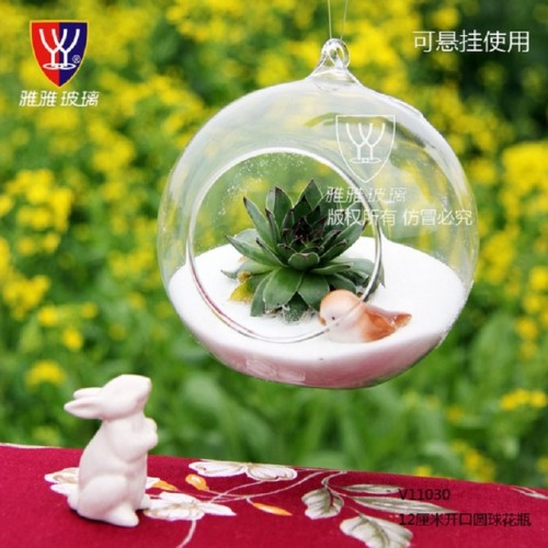O RoseLif Brand Cute Hot Transparent Glass Globes With 1 Hole Hanging Terrarium Vase Party Wedding