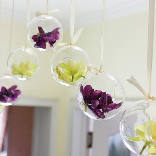 O RoseLif Brand Tiny Hot Clear Glass Globes With 1 Hole Flower Hanging Vase Hydroponic Home.