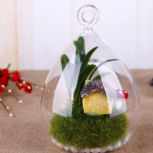SOLEDI Hanging Glass Vase Ellipse Hanging Terrarium Glass Vase Flower Indoor Home Decor.