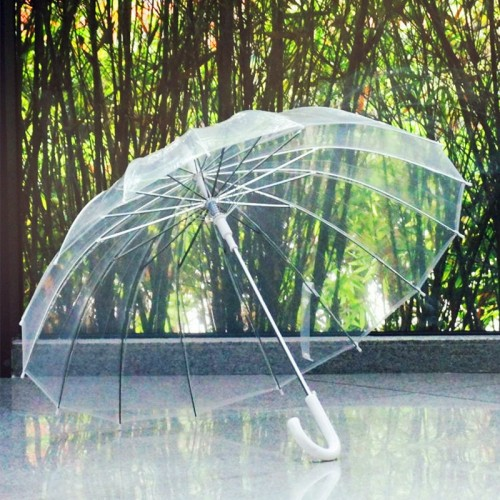 Semi Automatic Transparent Umbrellas For Protect Against Wind And Rain Long Handle Umbrella Clear Field