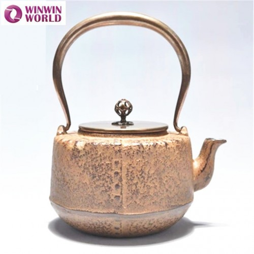 Vintage Cast Iron Teapot Top Quality Chinese Thick Kettl Tea Pot for Camping Outdoors uncoated Japanese.jpg 640x640