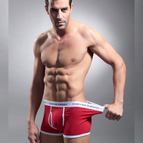 Men Boxers Popular New Brand Man Underwear Breathable Cotton Spandex Underpants Panties Solid Man Shorts
