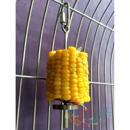 Parrot Supplies High Quality Stainless Steel Fruit fork Pure Apple Corn Fork Fork Birdcage Toy Accessories