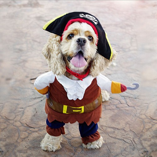 Set Cute Cartoon Funny Cats Pirate Costumes Suit Dressing Up Clothing Pets