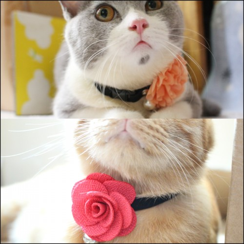 artificial flower Cat Collar Collar for Pet Cat