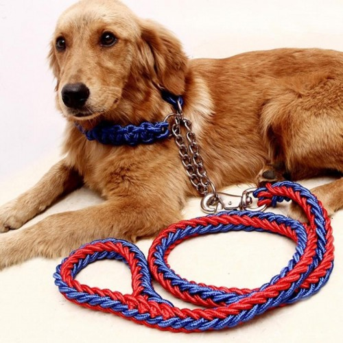 Upgraded color collar stereotyped rope Large Dog Leashes Pet Traction