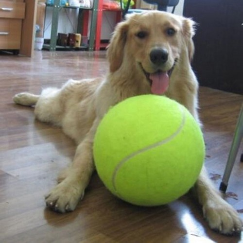 Giant Tennis Ball For Pet Chew Toy Big Inflatable Tennis Ball Signature Mega Jumbo Pet Toy