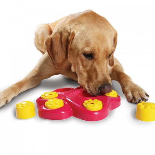 Multifunction Pet Bowl Holes Dog Paw Educational Toys Puppy Puzzle Toys Safety Plastic