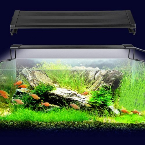 Aquarium Fish Tank Smd Led Light Lamp 11W 2 Mode 50Cm 60 White 12 Blue Eu