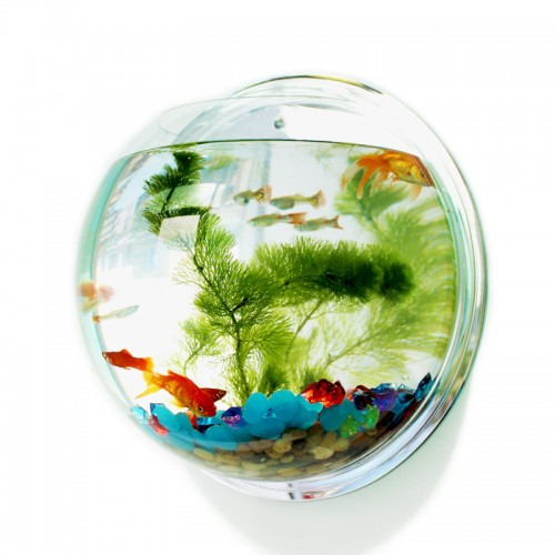 Acrylic Fish Bowl Wall Hanging Aquarium Tank Aquatic Pet Supplies Pet Products Wall Mount