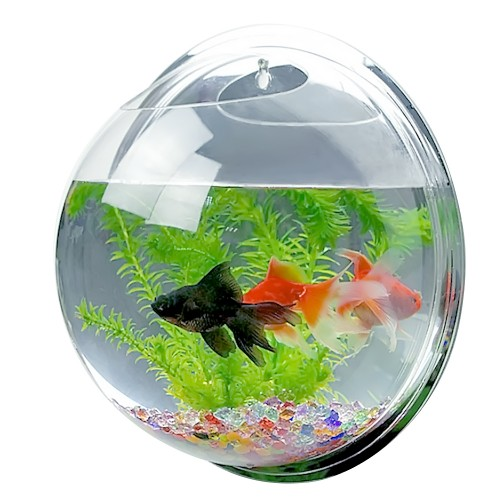Dia Mini Acrylic Round Wall Mounted Hanging Aquarium Tank Fish Bowls Aquatic Pet Flower Plant